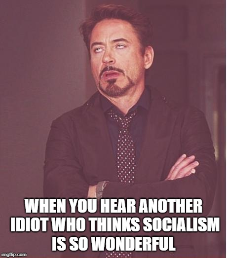 Face You Make Robert Downey Jr Meme | WHEN YOU HEAR ANOTHER IDIOT WHO THINKS SOCIALISM IS SO WONDERFUL | image tagged in memes,face you make robert downey jr | made w/ Imgflip meme maker