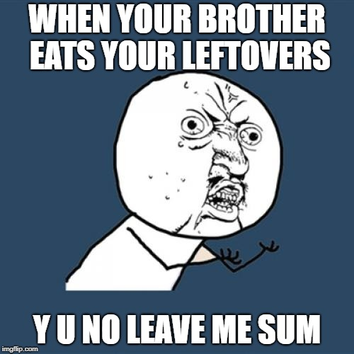 Y U No Meme | WHEN YOUR BROTHER EATS YOUR LEFTOVERS Y U NO LEAVE ME SUM | image tagged in memes,y u no | made w/ Imgflip meme maker
