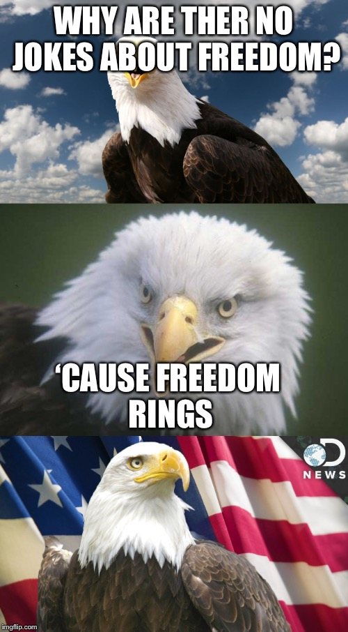 Happy Fourth of July, etc | WHY ARE THER NO JOKES ABOUT FREEDOM? 'CAUSE FREEDOM RINGS | image tagged in fourth of july,bald eagle,memes | made w/ Imgflip meme maker