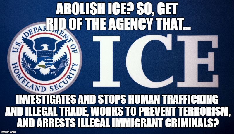 They Want Us To Abolish Ice? | ABOLISH ICE? SO, GET RID OF THE AGENCY THAT... INVESTIGATES AND STOPS HUMAN TRAFFICKING AND ILLEGAL TRADE, WORKS TO PREVENT TERRORISM, AND A | image tagged in ice,illegal immigration,trump,liberals,stupid liberals | made w/ Imgflip meme maker