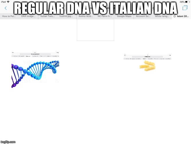 DNA | REGULAR DNA VS ITALIAN DNA | image tagged in dna | made w/ Imgflip meme maker