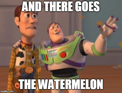 X, X Everywhere Meme | AND THERE GOES THE WATERMELON | image tagged in memes,x,x everywhere,x x everywhere | made w/ Imgflip meme maker