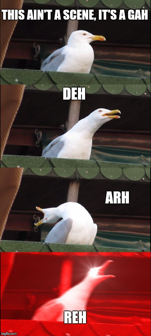 Inhaling Seagull Meme | THIS AIN'T A SCENE, IT'S A GAH DEH ARH REH | image tagged in memes,inhaling seagull | made w/ Imgflip meme maker