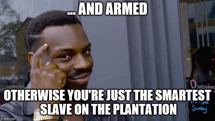 Roll Safe Think About It Meme | ... AND ARMED OTHERWISE YOU'RE JUST THE SMARTEST SLAVE ON THE PLANTATION | image tagged in memes,roll safe think about it | made w/ Imgflip meme maker