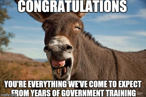 Donkey Jackass Braying | CONGRATULATIONS YOU'RE EVERYTHING WE'VE COME TO EXPECT FROM YEARS OF GOVERNMENT TRAINING | image tagged in donkey jackass braying | made w/ Imgflip meme maker