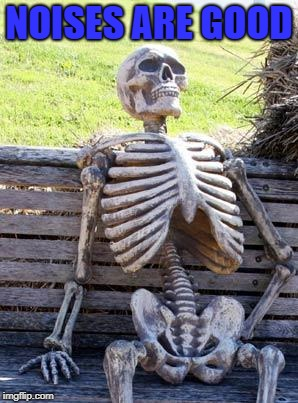 Waiting Skeleton Meme | NOISES ARE GOOD | image tagged in memes,waiting skeleton | made w/ Imgflip meme maker