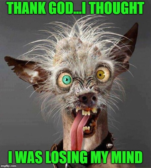 THANK GOD...I THOUGHT I WAS LOSING MY MIND | made w/ Imgflip meme maker