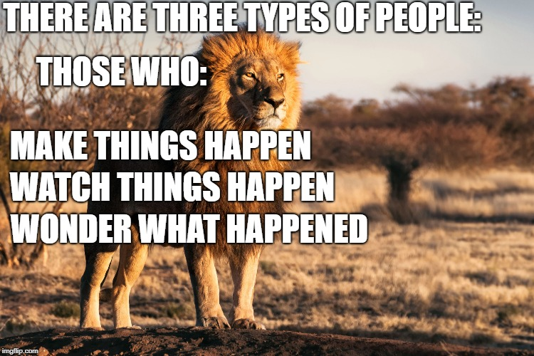 Lions and Gazelles   | THERE ARE THREE TYPES OF PEOPLE: THOSE WHO: MAKE THINGS HAPPEN WATCH THINGS HAPPEN WONDER WHAT HAPPENED | image tagged in inspirational,motivational | made w/ Imgflip meme maker