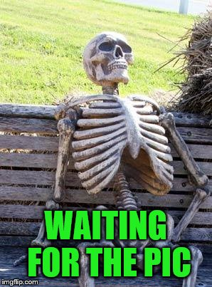 Waiting Skeleton Meme | WAITING FOR THE PIC | image tagged in memes,waiting skeleton | made w/ Imgflip meme maker