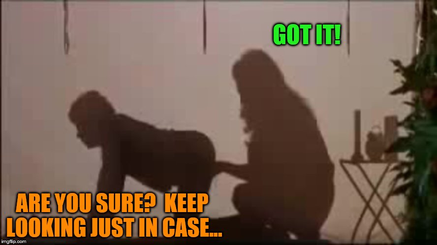 GOT IT! ARE YOU SURE?  KEEP LOOKING JUST IN CASE... | made w/ Imgflip meme maker