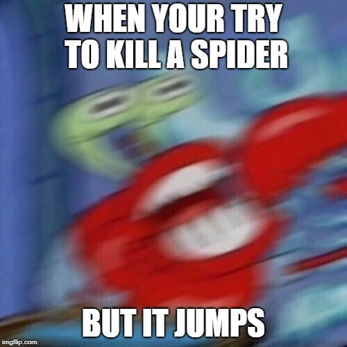 WHEN YOUR TRY TO KILL A SPIDER BUT IT JUMPS | image tagged in mr krabs mad | made w/ Imgflip meme maker