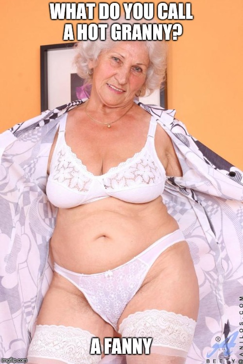 WHAT DO YOU CALL A HOT GRANNY? A FANNY | image tagged in hot grandma | made w/ Imgflip meme maker