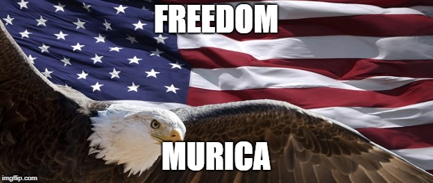 Happy 4th of July | FREEDOM MURICA | image tagged in 'murica,4th of july,freedom in murica,independence day | made w/ Imgflip meme maker