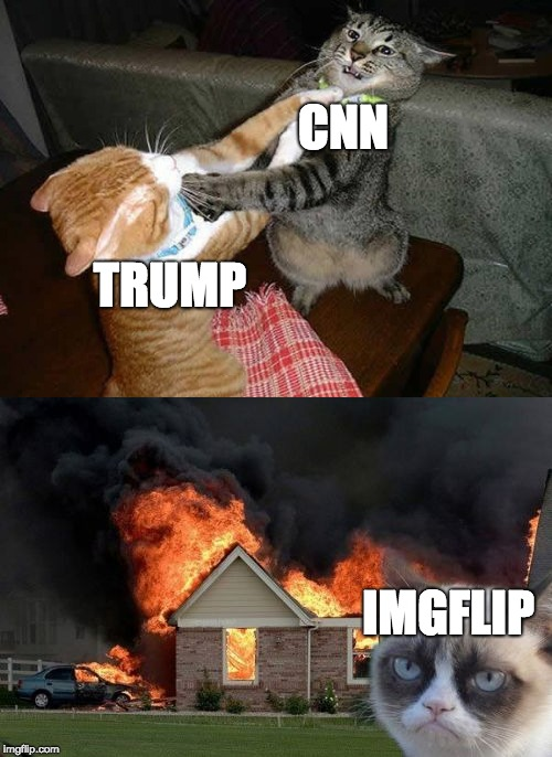 Imgflip's memes are made out of these | CNN TRUMP IMGFLIP | image tagged in memes,grumpy cat | made w/ Imgflip meme maker
