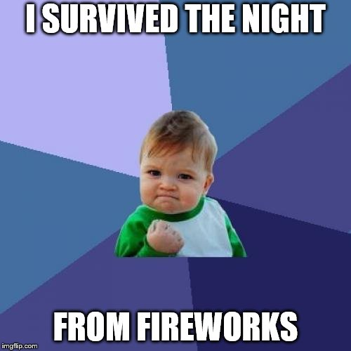 THEM DAMN FIREWORKS | I SURVIVED THE NIGHT FROM FIREWORKS | image tagged in memes,success kid | made w/ Imgflip meme maker