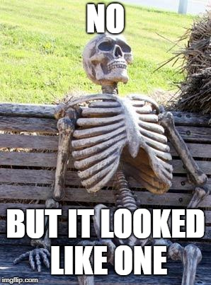 Waiting Skeleton Meme | NO BUT IT LOOKED LIKE ONE | image tagged in memes,waiting skeleton | made w/ Imgflip meme maker