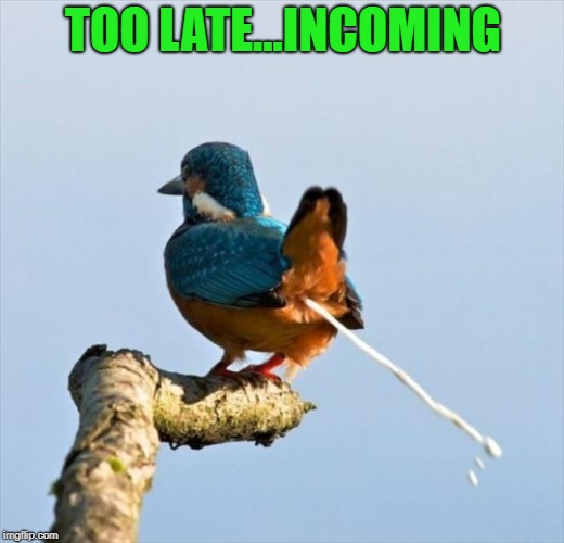 TOO LATE...INCOMING | made w/ Imgflip meme maker
