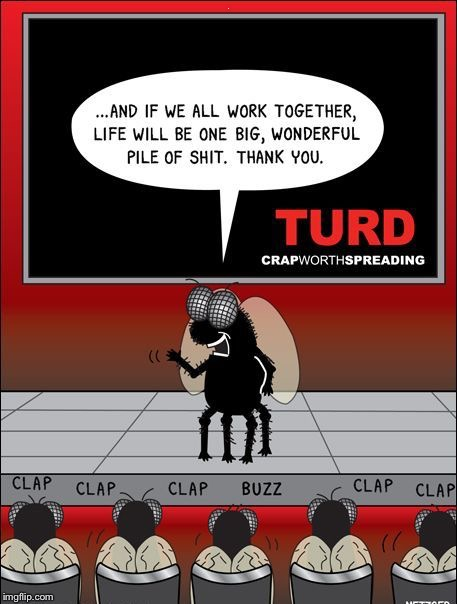 . | image tagged in a fly turd a fly turd | made w/ Imgflip meme maker
