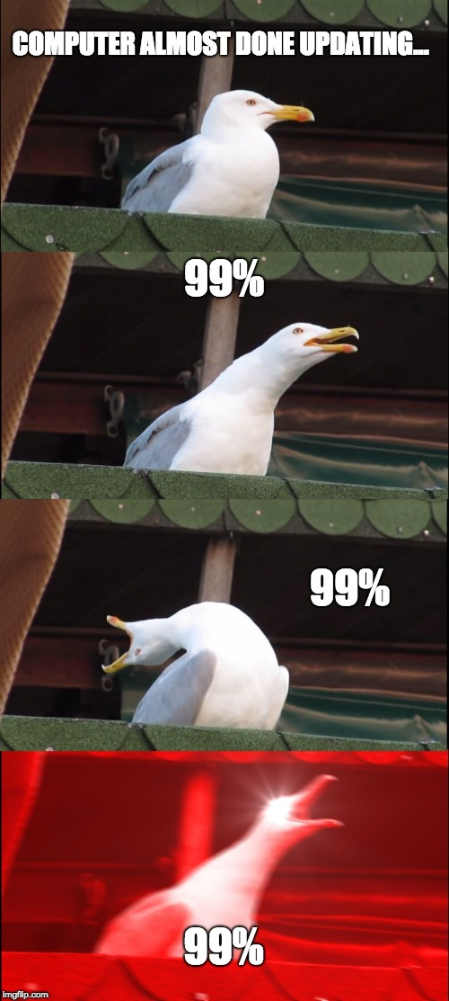 Computer updates be like... | COMPUTER ALMOST DONE UPDATING... 99% 99% 99% | image tagged in memes,inhaling seagull | made w/ Imgflip meme maker