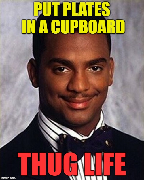 Carlton Banks Thug Life | PUT PLATES IN A CUPBOARD THUG LIFE | image tagged in carlton banks thug life | made w/ Imgflip meme maker