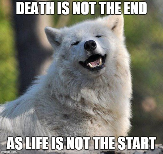 DEATH IS NOT THE END AS LIFE IS NOT THE START | image tagged in supersecretwolf | made w/ Imgflip meme maker