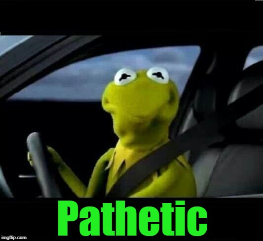 kermit the frog frowned face | Pathetic | image tagged in kermit the frog frowned face | made w/ Imgflip meme maker