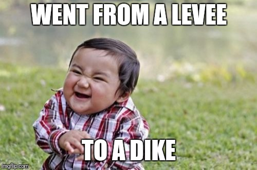 Evil Toddler Meme | WENT FROM A LEVEE TO A DIKE | image tagged in memes,evil toddler | made w/ Imgflip meme maker