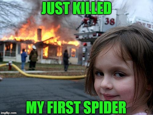 Disaster Girl Meme | JUST KILLED MY FIRST SPIDER | image tagged in memes,disaster girl | made w/ Imgflip meme maker
