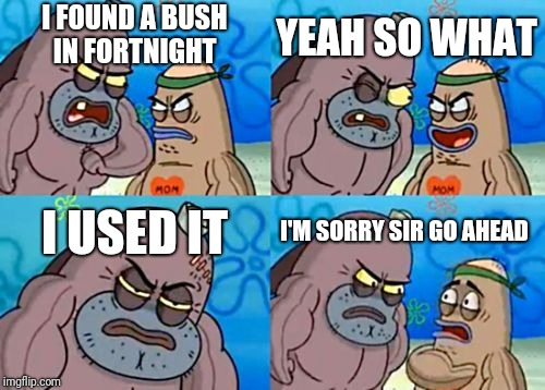 How Tough Are You Meme | I FOUND A BUSH IN FORTNIGHT YEAH SO WHAT I USED IT I'M SORRY SIR GO AHEAD | image tagged in memes,how tough are you | made w/ Imgflip meme maker
