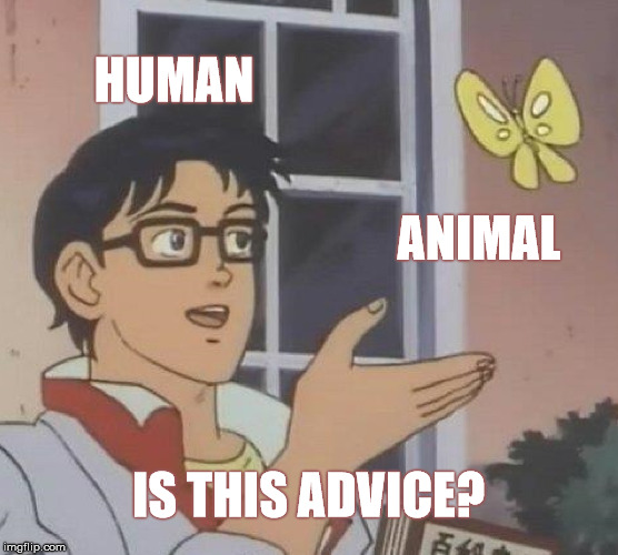 Is This A Pigeon Meme | HUMAN ANIMAL IS THIS ADVICE? | image tagged in memes,is this a pigeon | made w/ Imgflip meme maker