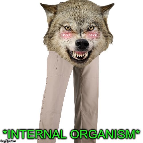 *INTERNAL ORGANISM* | made w/ Imgflip meme maker