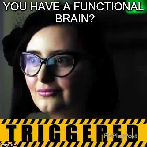 The ability to speak does not make you intelligent | YOU HAVE A FUNCTIONAL BRAIN? | image tagged in memes,triggered,brain,triggered feminist | made w/ Imgflip meme maker