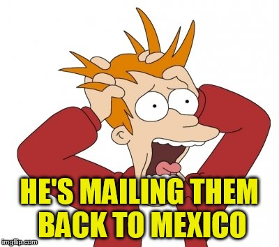 HE'S MAILING THEM BACK TO MEXICO | made w/ Imgflip meme maker
