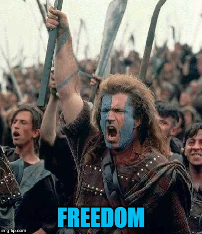 Braveheart | FREEDOM | image tagged in braveheart | made w/ Imgflip meme maker