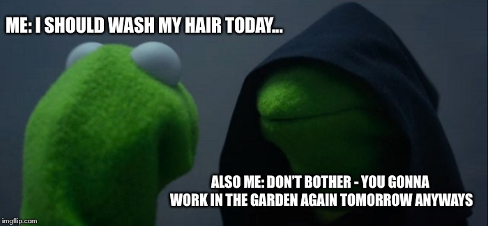 Evil Kermit Meme | ME: I SHOULD WASH MY HAIR TODAY... ALSO ME: DON'T BOTHER - YOU GONNA WORK IN THE GARDEN AGAIN TOMORROW ANYWAYS | image tagged in memes,evil kermit | made w/ Imgflip meme maker