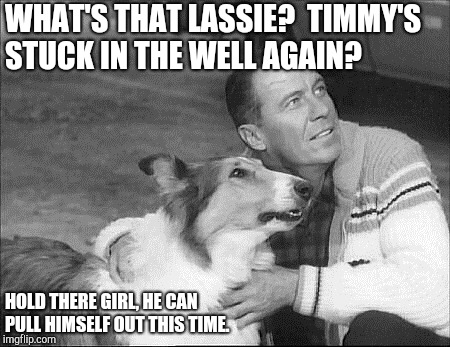 What's that Lassie dead horse trope | WHAT'S THAT LASSIE?  TIMMY'S STUCK IN THE WELL AGAIN? HOLD THERE GIRL, HE CAN PULL HIMSELF OUT THIS TIME. | image tagged in what's that lassie | made w/ Imgflip meme maker