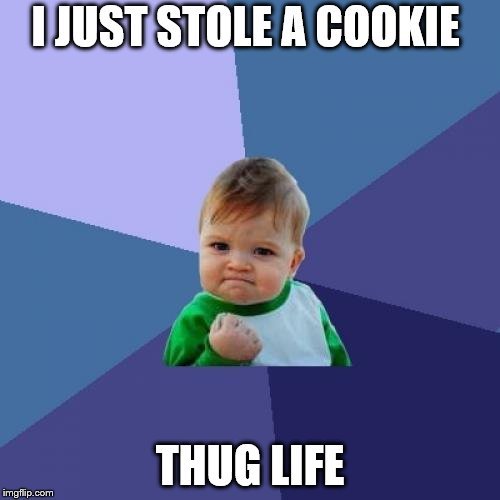Success Kid Meme | I JUST STOLE A COOKIE THUG LIFE | image tagged in memes,success kid | made w/ Imgflip meme maker