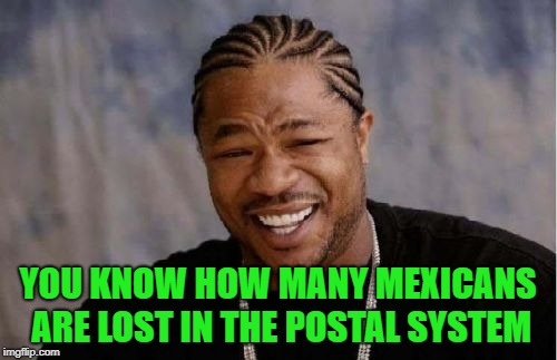 Yo Dawg Heard You Meme | YOU KNOW HOW MANY MEXICANS ARE LOST IN THE POSTAL SYSTEM | image tagged in memes,yo dawg heard you | made w/ Imgflip meme maker
