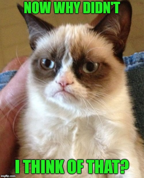 Grumpy Cat Meme | NOW WHY DIDN'T I THINK OF THAT? | image tagged in memes,grumpy cat | made w/ Imgflip meme maker