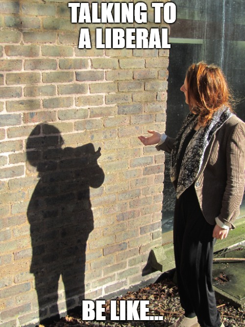 If the walls could talk. | TALKING TO A LIBERAL BE LIKE... | image tagged in liberal,liberal logic,liberals,retarded liberal protesters | made w/ Imgflip meme maker