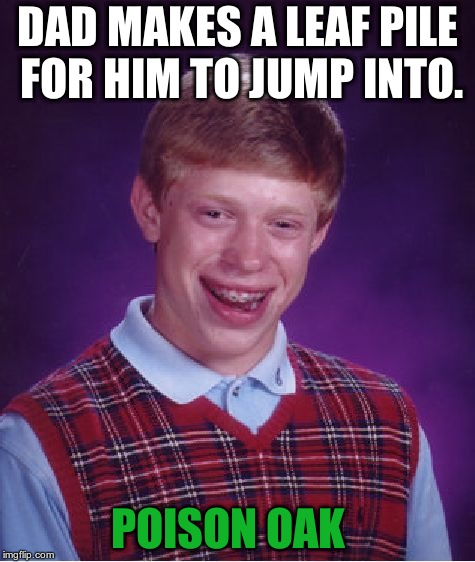 Bad Luck Brian Meme | DAD MAKES A LEAF PILE FOR HIM TO JUMP INTO. POISON OAK | image tagged in memes,bad luck brian | made w/ Imgflip meme maker