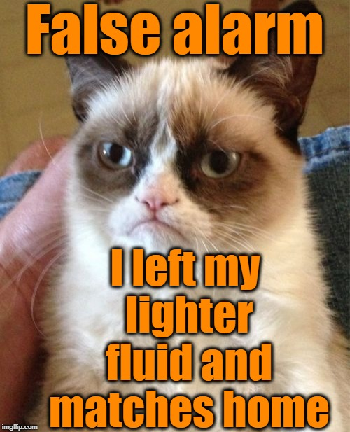 Grumpy Cat Meme | False alarm I left my lighter fluid and matches home | image tagged in memes,grumpy cat | made w/ Imgflip meme maker