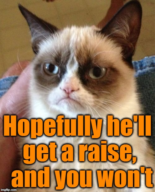 Grumpy Cat Meme | Hopefully he'll get a raise,  and you won't | image tagged in memes,grumpy cat | made w/ Imgflip meme maker