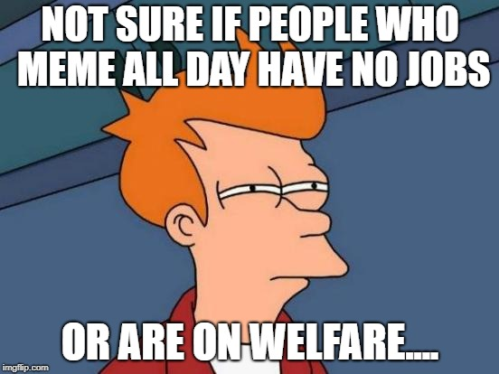 Futurama Fry Meme | NOT SURE IF PEOPLE WHO MEME ALL DAY HAVE NO JOBS OR ARE ON WELFARE.... | image tagged in memes,futurama fry | made w/ Imgflip meme maker