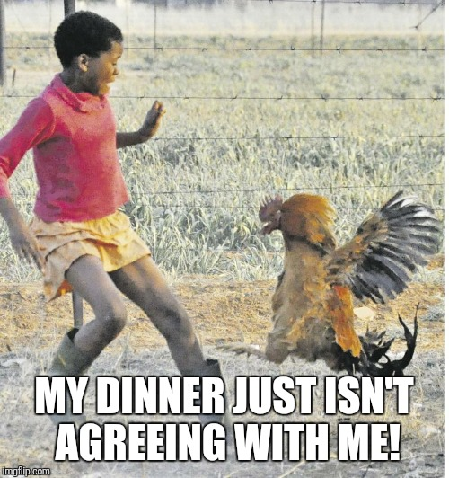 < erp! >  Sorry! | MY DINNER JUST ISN'T AGREEING WITH ME! | image tagged in memes,rooster,attack,dinner isn't agreeing with me | made w/ Imgflip meme maker