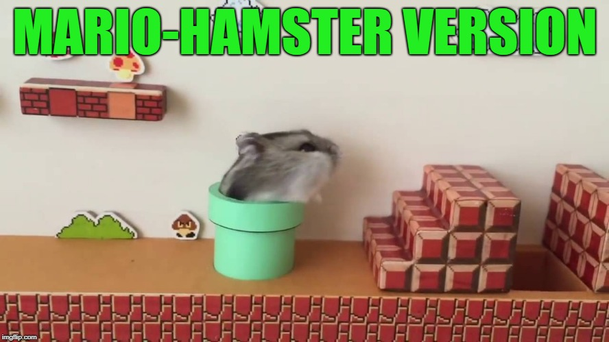 Hamster Weekend July 6-8, a bachmemeguy2, 1forpeace & Shen_Hiroku_Nagato event! | MARIO-HAMSTER VERSION | image tagged in memes,cute,hamster weekend | made w/ Imgflip meme maker