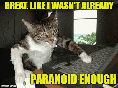 GREAT. LIKE I WASN'T ALREADY PARANOID ENOUGH | made w/ Imgflip meme maker
