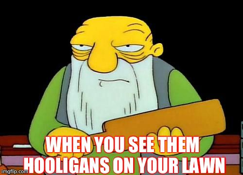 That's a paddlin' Meme | WHEN YOU SEE THEM HOOLIGANS ON YOUR LAWN | image tagged in memes,that's a paddlin' | made w/ Imgflip meme maker