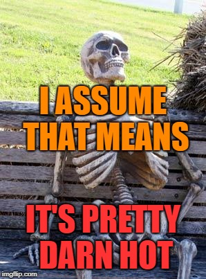 Waiting Skeleton Meme | I ASSUME THAT MEANS IT'S PRETTY DARN HOT | image tagged in memes,waiting skeleton | made w/ Imgflip meme maker