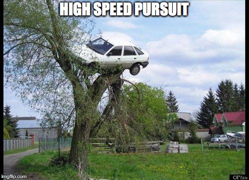 car in tree | HIGH SPEED PURSUIT | image tagged in car in tree | made w/ Imgflip meme maker